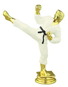 Color Male Martial Arts Trophy Figure RP80155CL