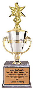 Boys Basketball Tournament Trophies Great Awards for Basketball Tournaments as Low as $44.99