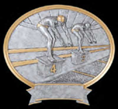 Resin Male Swimmer Plaque Award