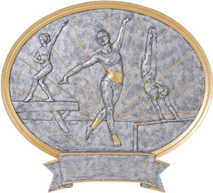 Gymnastic Plaques as low as $13.49