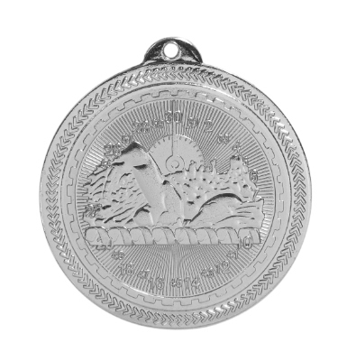 BL216 Swimming Medal with Six Pricing Options