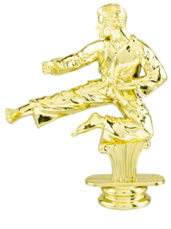 Male Karate Trophy Figure RP84165