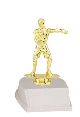 Base and Figure Boxing and Wrestling  Trophies