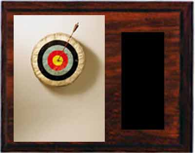 Image Target Archery Plaques H Series