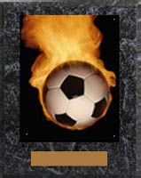 Image Soccer Plaque N Style