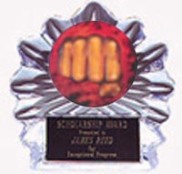 Acrylic Martial Arts Trophies Flame Ice Awards